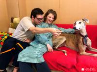 Terapia asistida perros